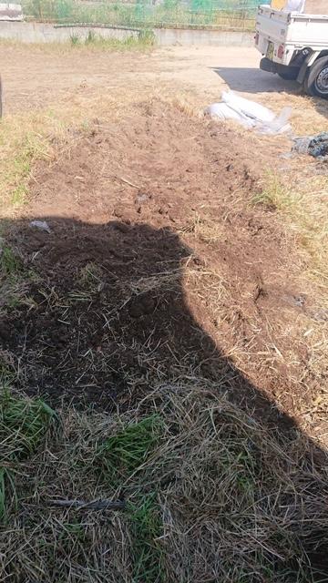 岡山市南区での草刈り後