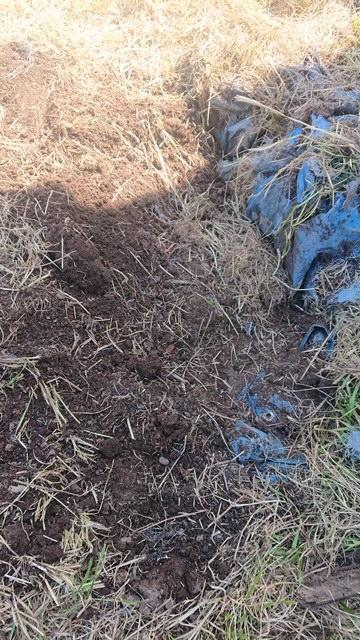 岡山市南区での草刈り